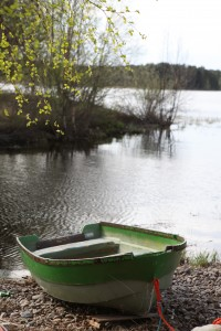 *GreenBoat copy